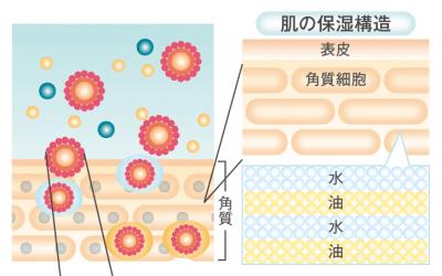 シズカゲルは球状ラメラ構造で浸透率を高くしてる!