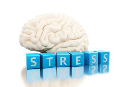 ストレスとは脳の自己防衛反応