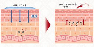 ドクターシムラのグリコール酸が肌のターンオーバーをサポート