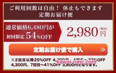公式サイトは一番安く購入できて安心!