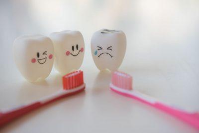 虫歯予防や骨を丈夫にする働きも