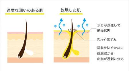 適度な潤いのある肌・乾燥した肌