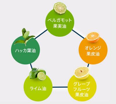 5つの天然柑橘系オイルでリラックス効果をプラス
