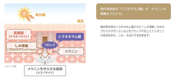 トラネキサム酸が美白に効果的なメカニズム
