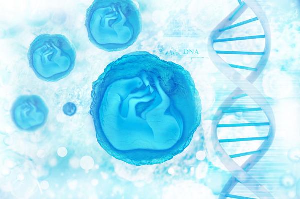 ハーバード大学が認定した若返り成長因子GDF-11