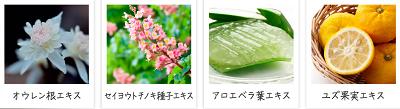 天然由来の植物成分を6種類配合!