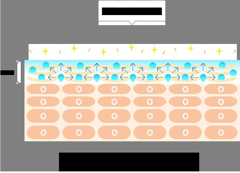 美肌菌の保湿効果