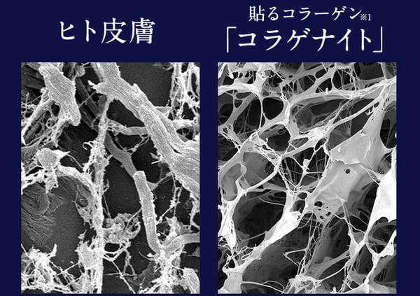 コラゲナイトは97%ヒトの皮膚と同じ構造