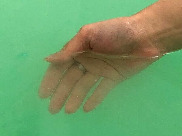 バブ epur(エピュール)入浴前と入浴後の表面体温変化