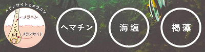 haru黒髪スカルプ・プロが美しい髪の毛に導いてくれる!