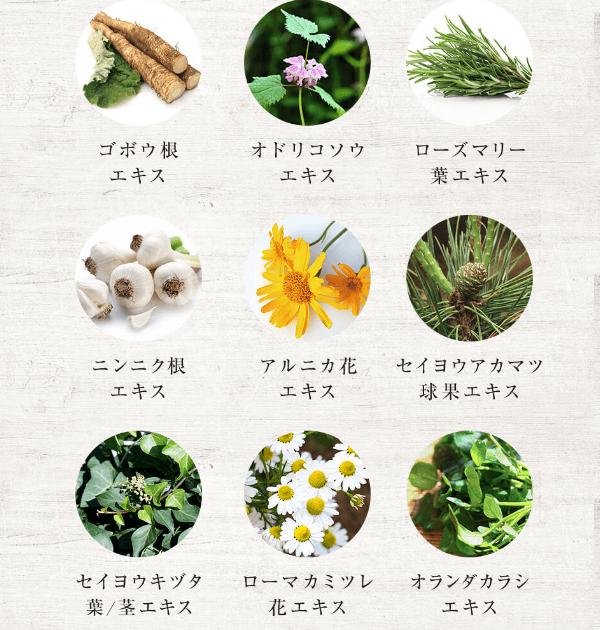 9種類の植物エキスでフケ・かゆみ・抜け毛を防ぐ