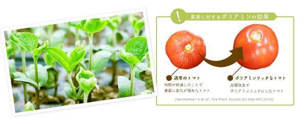 15種類の植物由来成分